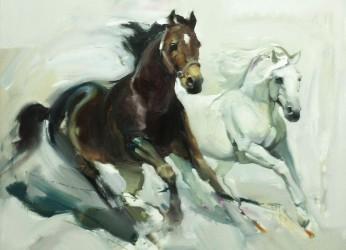 koni 6